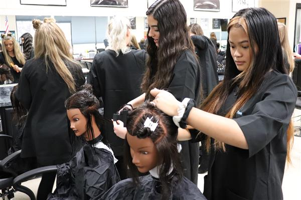 Cosmetology / Overview